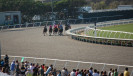 2014-Day at Races_9663